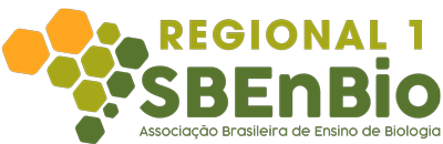Regional 1  - Sbenbio